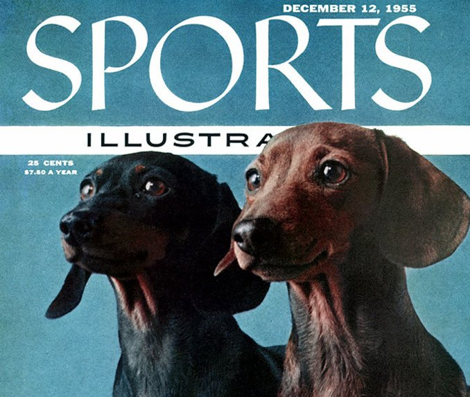 Happy Wednesday! Here's a gallery of dogs on the SI cover.  https://t.co/1CrjvJXeTq https://t.co/jgTbAjoVI5