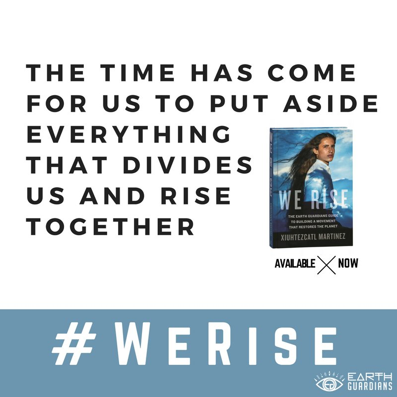 Challenge the status quo. Happy to be part of @XiuhtezcatlM's new book, #WeRise. ✊???? ????  https://t.co/n9vx5zpZhZ https://t.co/vRnD127MQy