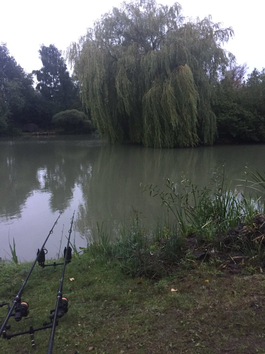 Another day in <b>Paradise</b>!! #carpfishing #chilled #banklife https://t.co/U5KDdTzw6w