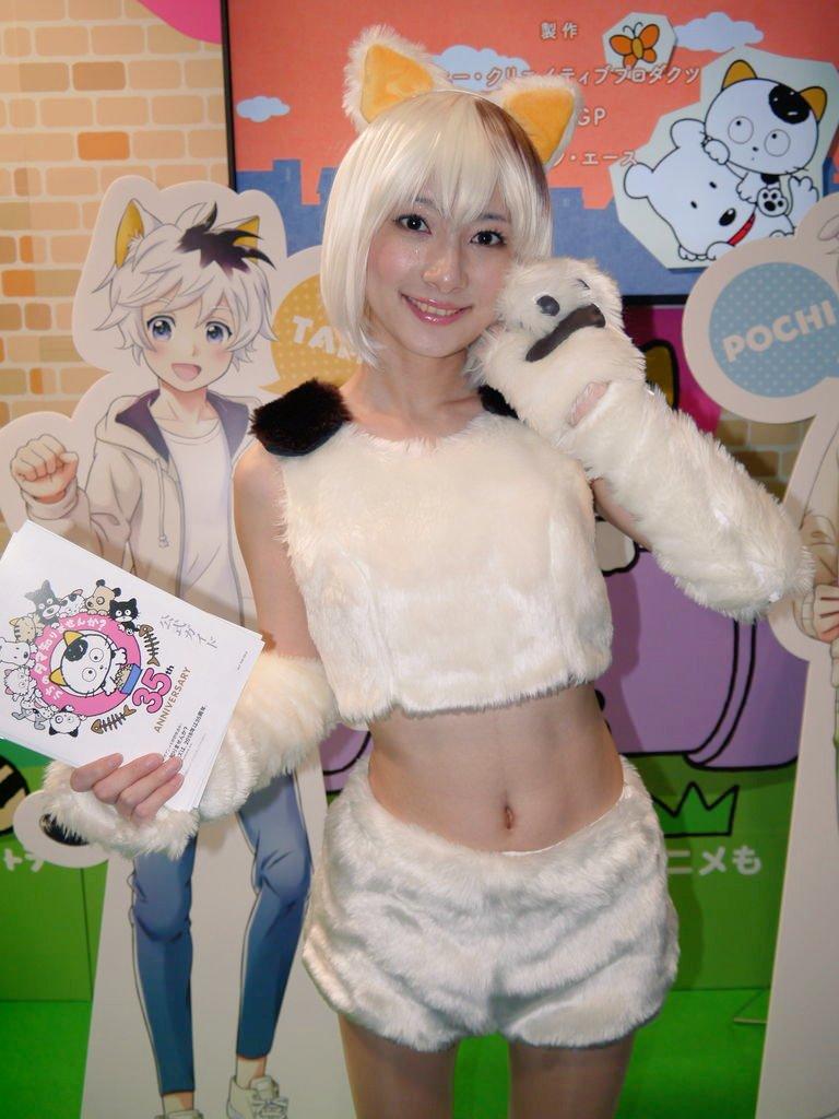 みやこメッセで開催の、京都国際マンガ・アニメフェアに行って来ました。会場内にはたくさんのブースがあり、うちのタマ知りませ