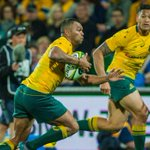Rugby Championship 2017: Wallabies blow lead to draw 23-all with South Africa in Perth