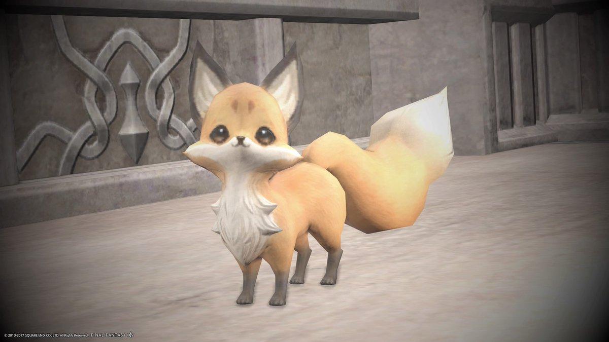 豆妖狐ちゃん手にいれましたー。モフモフしてて可愛いです。#FF14 #Fenrir鯖 #豆妖狐 #ミニオン
