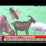 Laikipia County launches project to secure markets for farmers