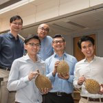 Cancer scientists sniff out durian genome