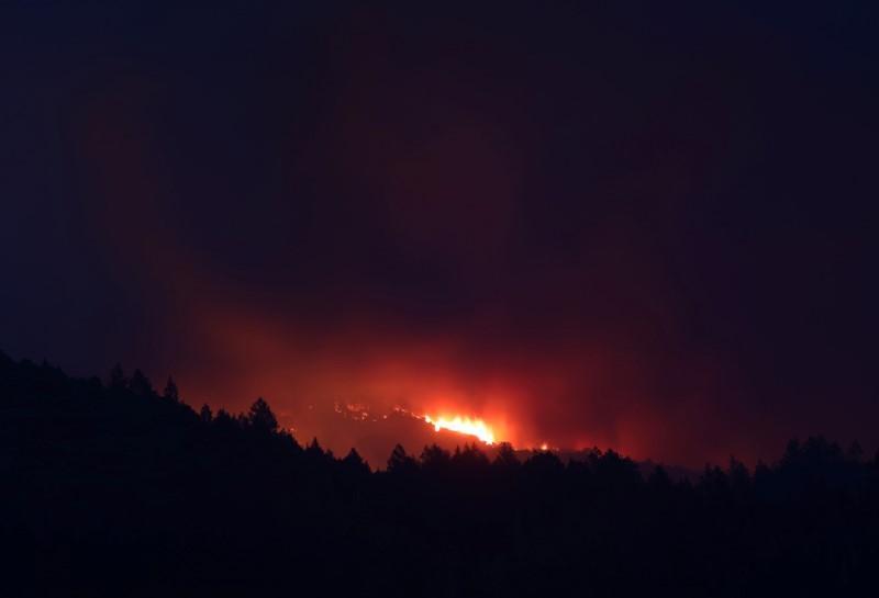 Pot farmer's dreams go up in smoke during California wildfires