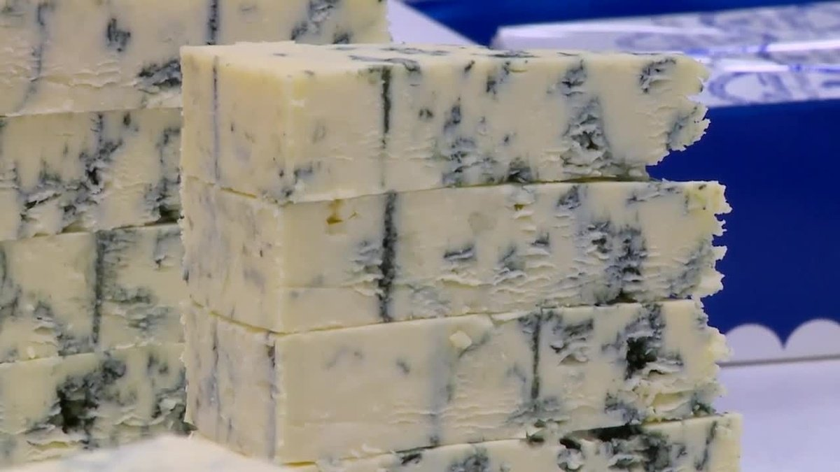 Maytag Blue Cheese back in business following Listeria scare