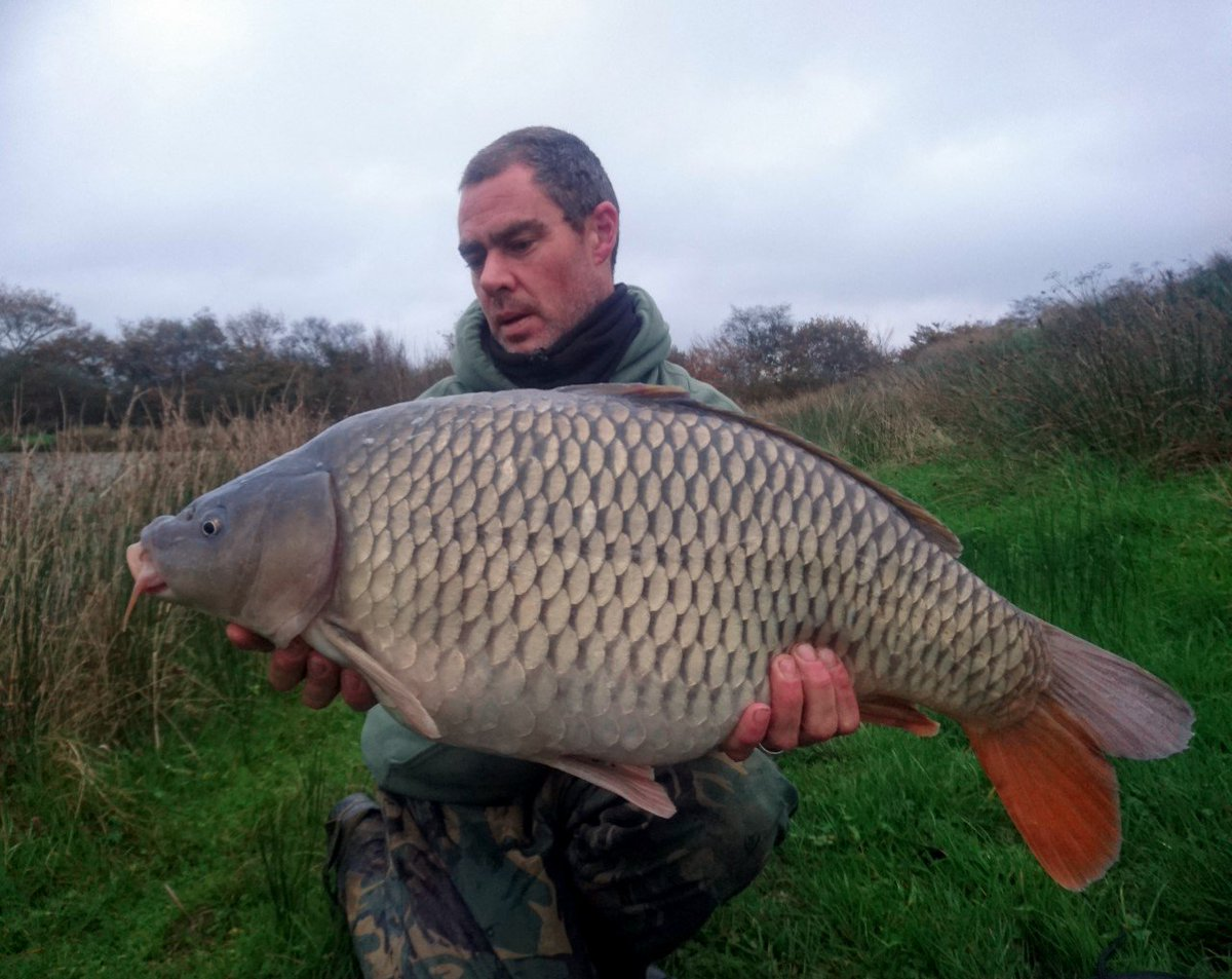 XANADU COMMON ALERT - 26lb 8oz from Nirvana #carpfishing #commoncarp https://t.co/6chCP4o1xB https:/
