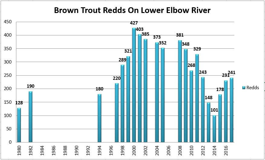test Twitter Media - Updated chart from @clgrivervalleys Lower Elbow Brown #trout Redd (spawning nest) count from Fri Nov 10th - 241 Redds in 2017, up from 231 in 2015, 178 in 2015, & lowest of 101 in 2014. #citizenscience https://t.co/qmTrmW92BY