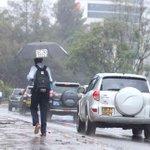 Lighter rains expected in coming weeks - Met
