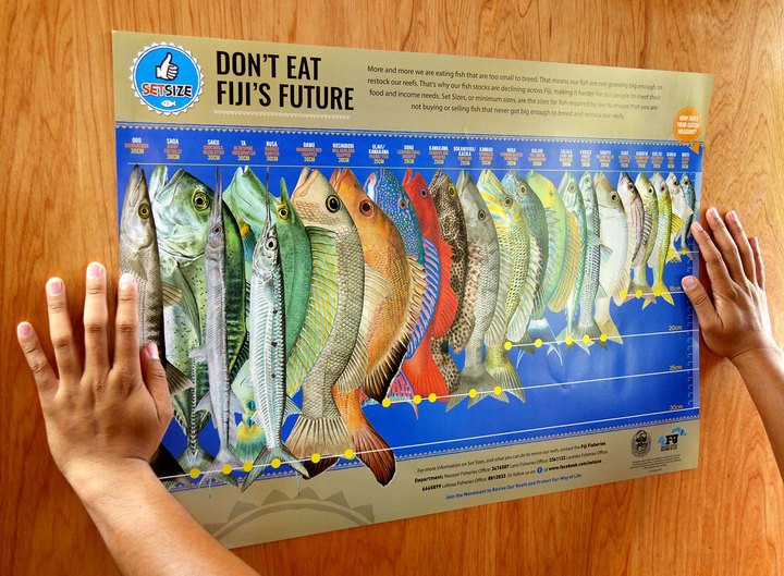 Ministry urges Fijians to go by the rules on fish limits