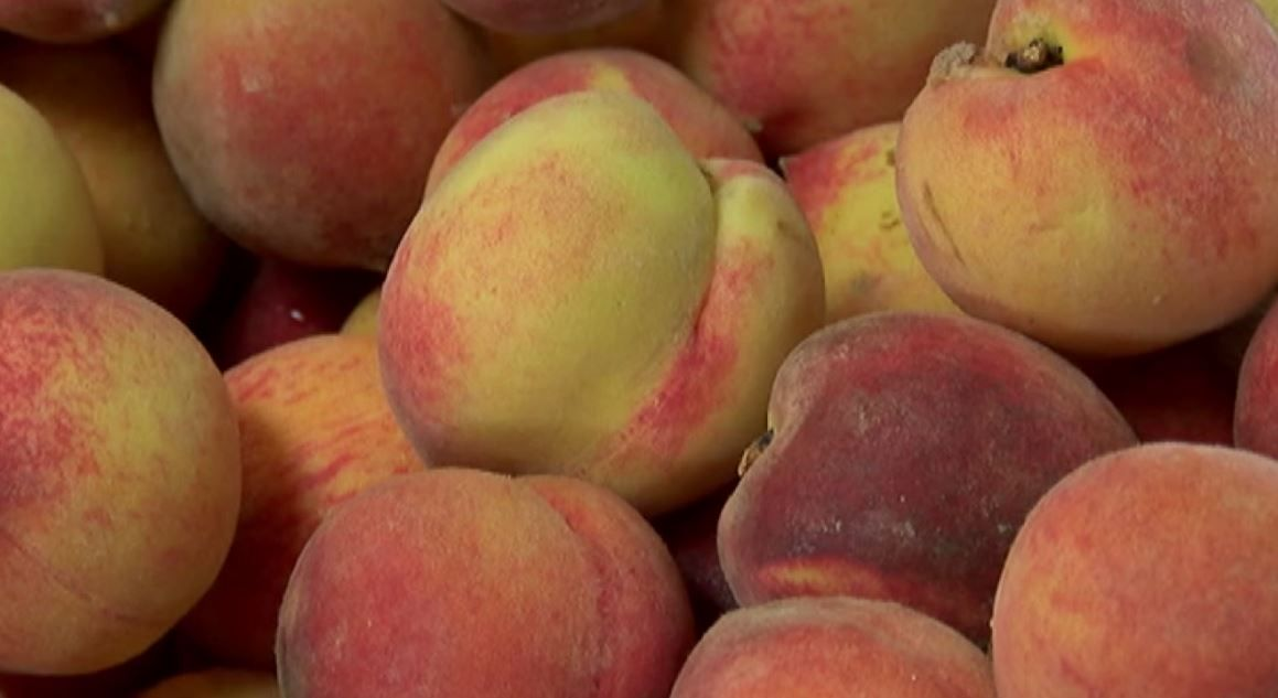 Chilton County peach farmers hoping for more cold weather