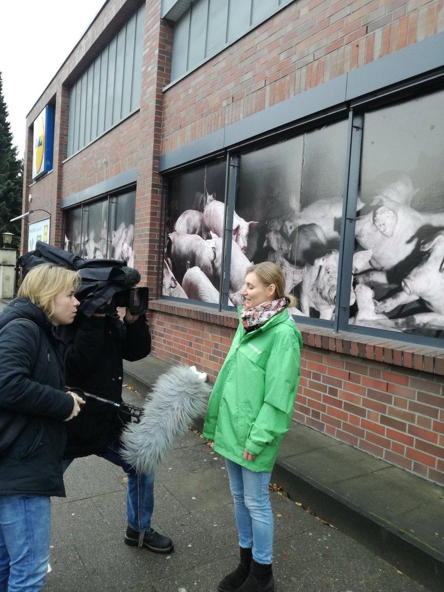 test Twitter Media - Greenpeace-Aktivist*innen protestieren gegen Billigfleisch bei @lidl #issgutjetzt https://t.co/BRgL4EuNfI