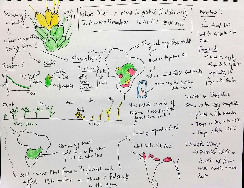 test Twitter Media - J. Mauricio Fernandes talks about how #wheatblast is a threat to global #foodsecurity and his groups effort at modeling disease risk in Brasil, including a smartphone app during a seminar at @ISFS_UF_IFAS #sketchnotes @embrapa https://t.co/u44cDT1opM