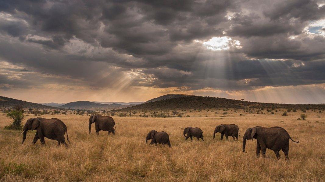 test Twitter Media - On a 21-day, expert-led expedition, travelers will explore the best of Africa's science, ecosystems and cultures   https://t.co/58J6wx8IHV [Sponsored] #AfricaByPrivatejet https://t.co/jpFKDm4RdU