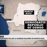 UN condemns deadly attack on peacekeepers in DR Congo