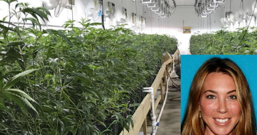 "Police bust multimillion-dollar weed ""fortress"" in Southern California"