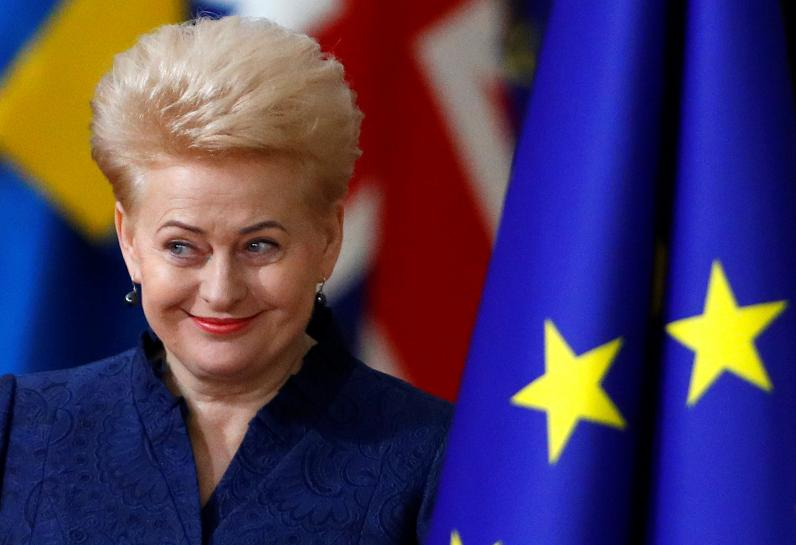 EU not in rush to reform euro zone as economy performing: Lithuanian p