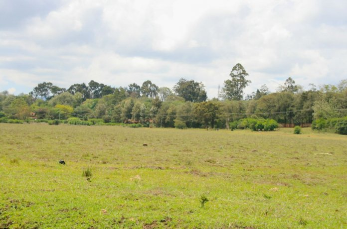 Land Registration Districts to be scrapped