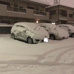 イカ2貫! ようやく到着。 到着でもイカの寿司が見れました。 雪だるまが作れるほど降った! 満員電...