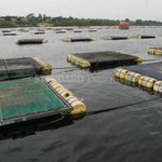 EALA legislators raise concern on lake projects