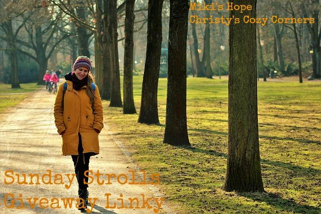 Sunday Stroll Giveaway Linky  2/18