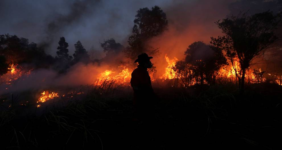 Four Indonesian provinces declare disaster alerts for forest, land fires