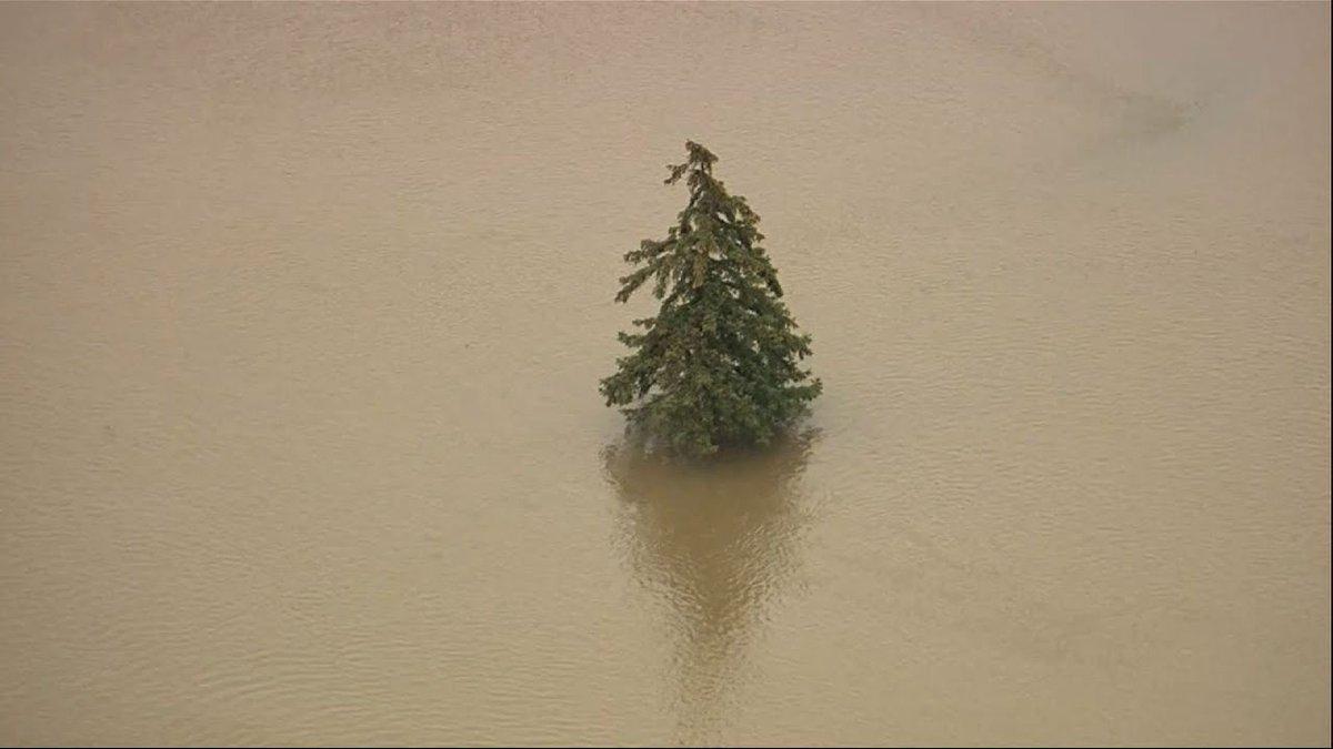 Heavy Rains Bring Detroit-Area Flooding