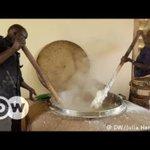 Ugandan schools go green | DW English