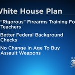 Trump Gun Plan Set To Be Unveiled