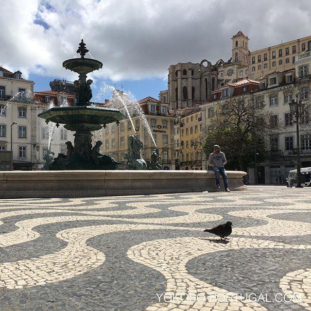 test ツイッターメディア - ポルトガルは石畳が有名です。石畳は、ボコボコしていて、たまに穴まであいていたり、雨の日は滑りやすく、日光が反射してまぶしいですが、とてもきれいです。 #ポルトガル https://t.co/wsVSsblKBD