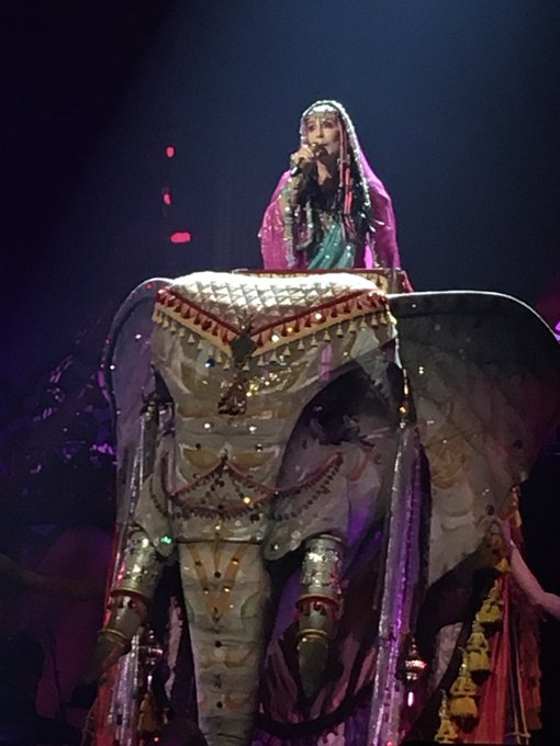 Happy Birthday, Cher!  I m looking forward to seeing your incredible show again in November.