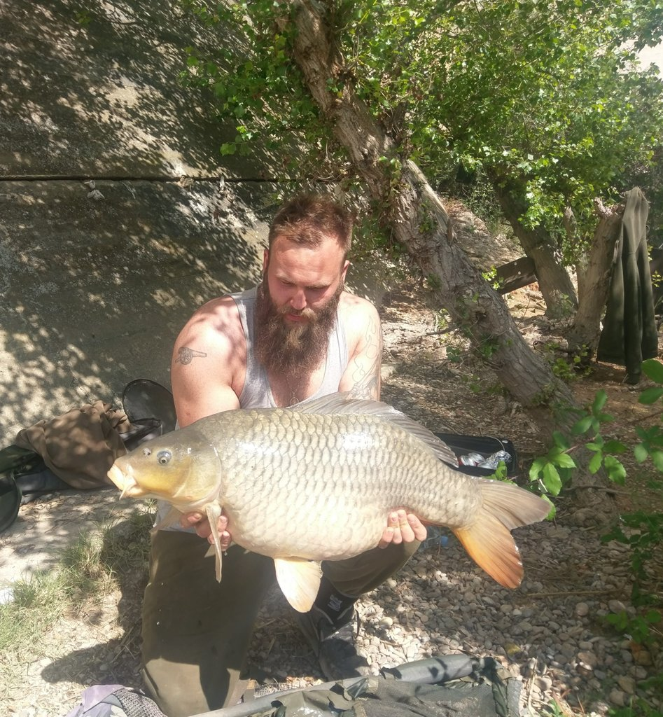 2<b>5lb</b>9oz #commoncarp #riverebro #mainlinecell #carpfishing https://t.co/QoMttoLBNv