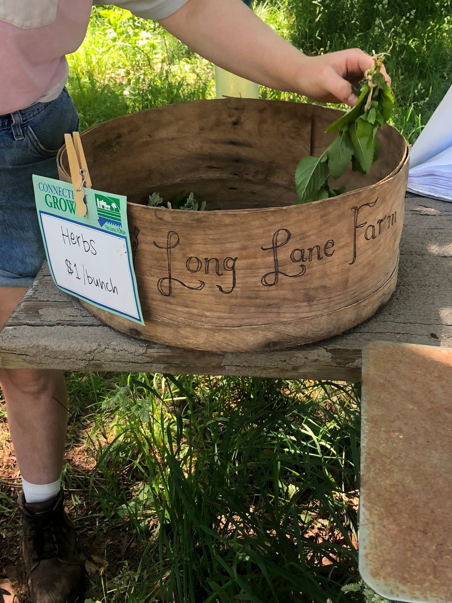 test Twitter Media - Starting today, the Long Lane Farm Stand will be selling organic produce from 3-5 every Tuesday afternoon throughout the summer. Stop by to support our student run farm! Located on the corner of Long Lane and Wadsworth Street. 🍅🍓🥦 https://t.co/MPl6kBwUl0