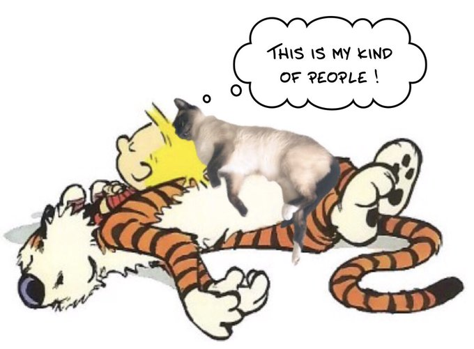 Happy 60th birthday, Bill Watterson and thank you for the eternal wonder of !
