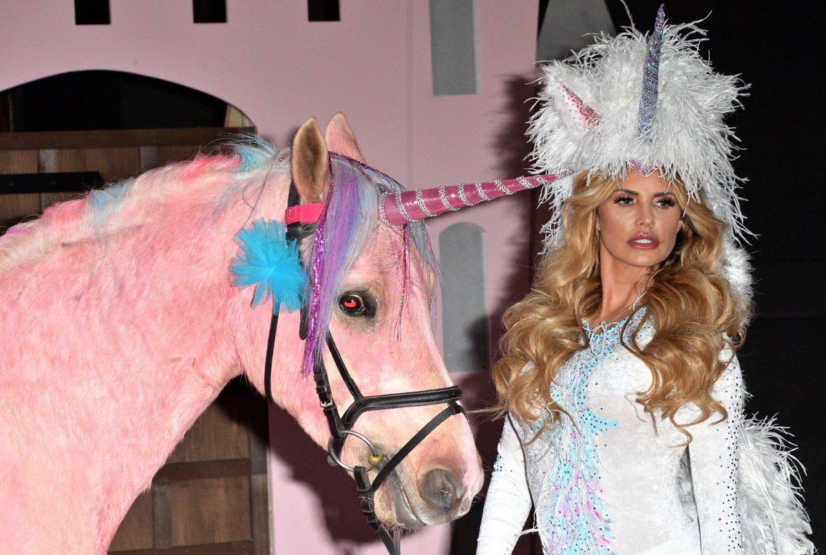 Katie Price forced to sell off her beloved animals amidst money woes
