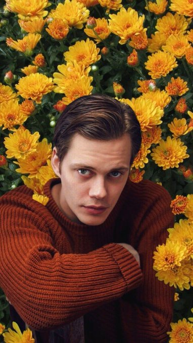 Happy Birthday to Bill Skarsgard!!!
