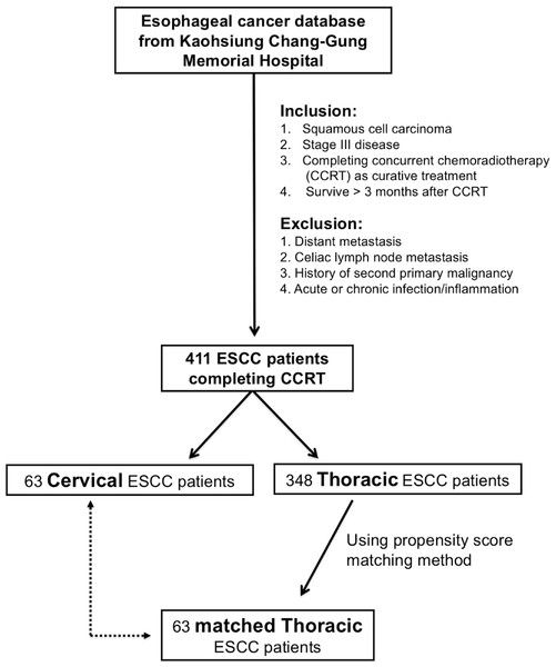 test Twitter Media - Inflammation-based prognostic scores predict the prognosis of locally advanced cervical esophageal squamous cell carcinoma patients receiving curative concurrent chemoradiotherapy: a propensity score-matched analysis https://t.co/YnpOvIiBiG https://t.co/24hJp4dw4m