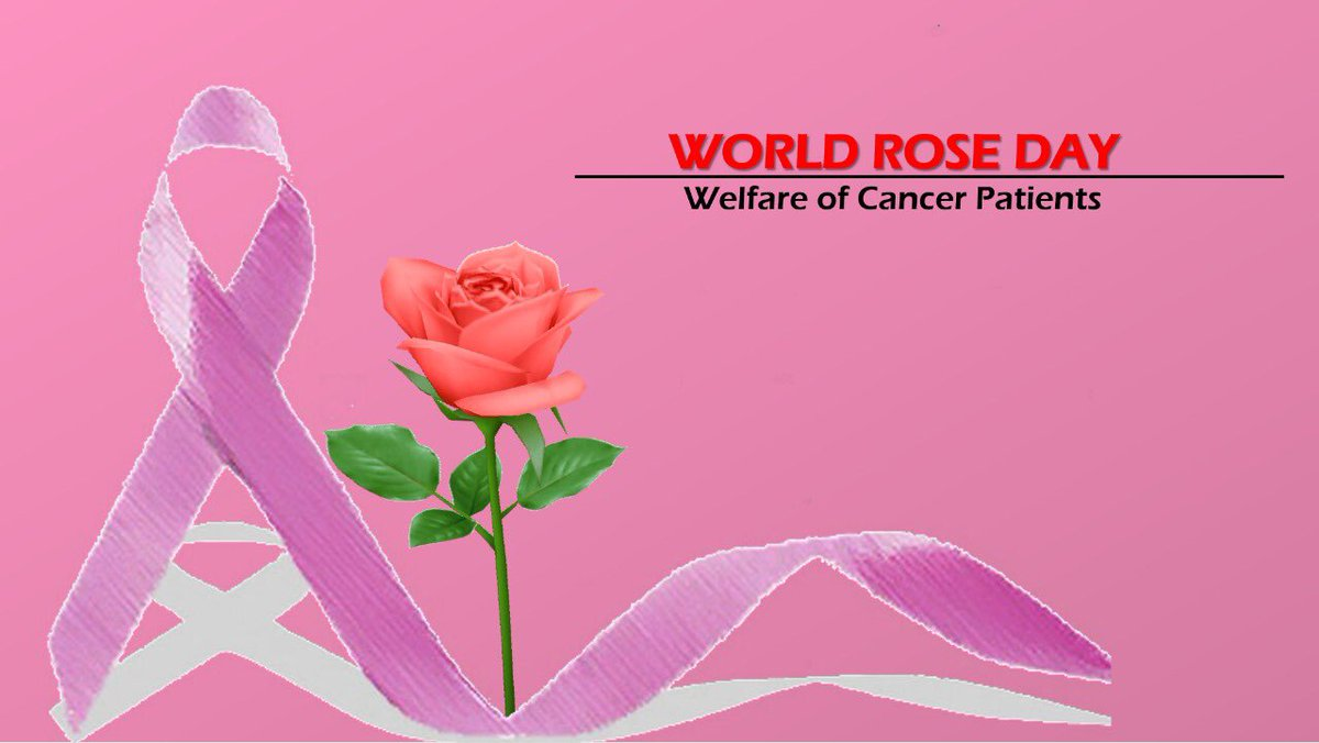 Rose Is A Symbol Of Love Care Concern September 22 Is Observed