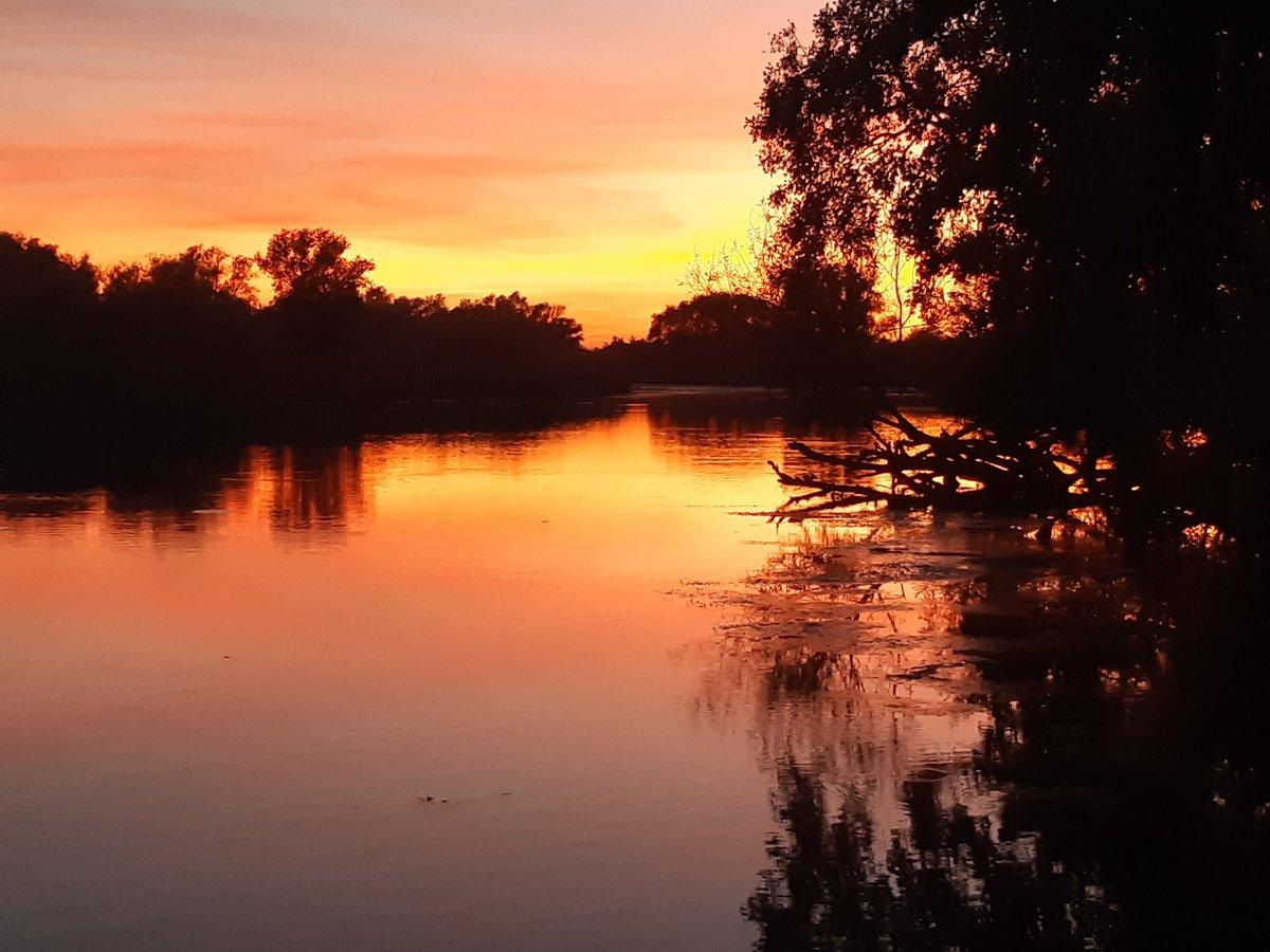Beautiful evening in national park de biesbosch, North Brabant Netherlands. #carpfishing #ciprobaits