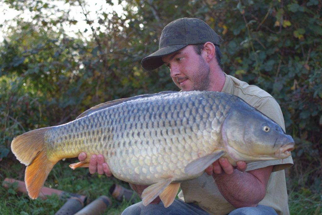 MAIN LAKE BEAUTIES! #carpfishing #carpy #commoncarp #mirrorcarp https://t.co/qEYQWL1BCH https://t.co