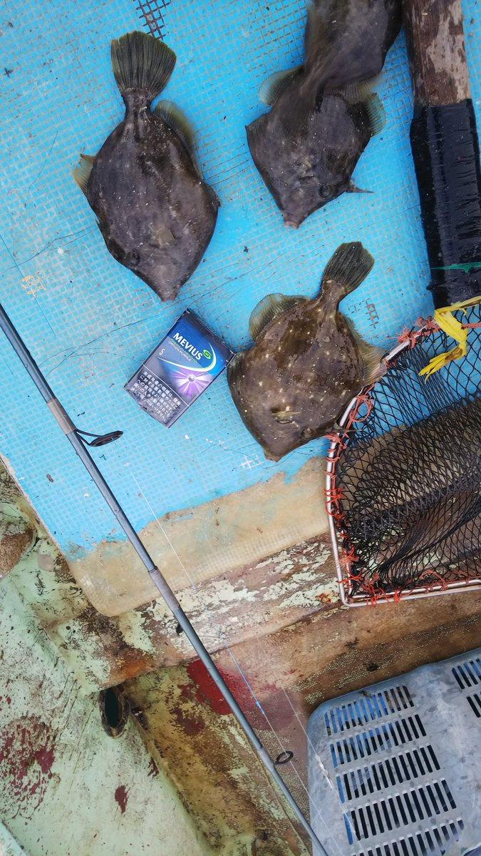 かなり、久しぶりにプライベートで釣り行ってきた(^^) 釣果 キュウセンベラ多数 フグ多数 ターゲット4枚 https://t.co/cTSe0e83jq