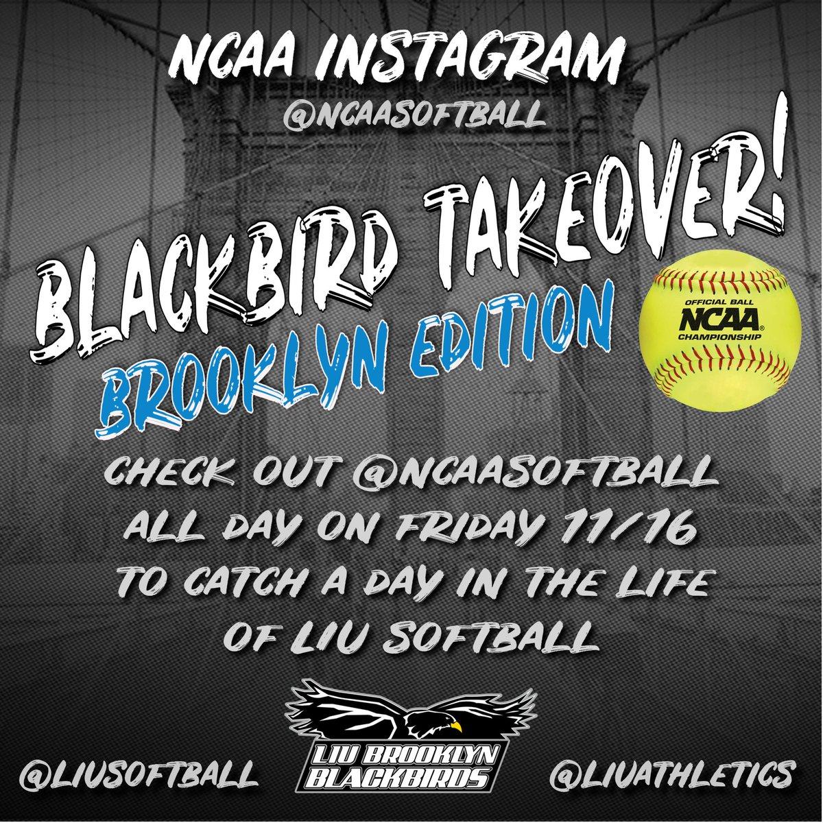 RT @LIUAthletics: Catch @LIUSoftball as they take over the @NCAAsoftball Instagram story today!!! 😎🥎🐦 https://t.co/E0M4BtqSOr