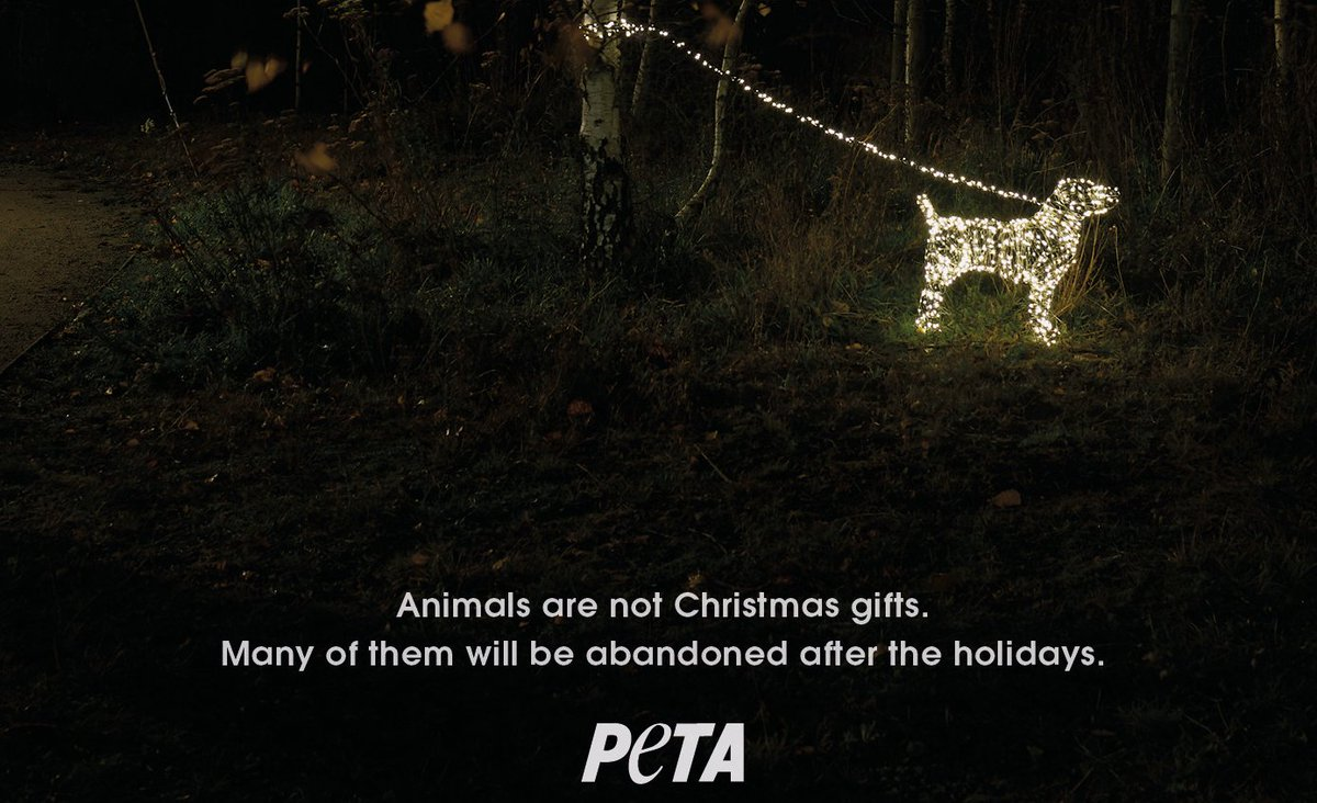 RT @IngridNewkirk: Animals are not #Christmas gifts! https://t.co/9FtG7hF7Se