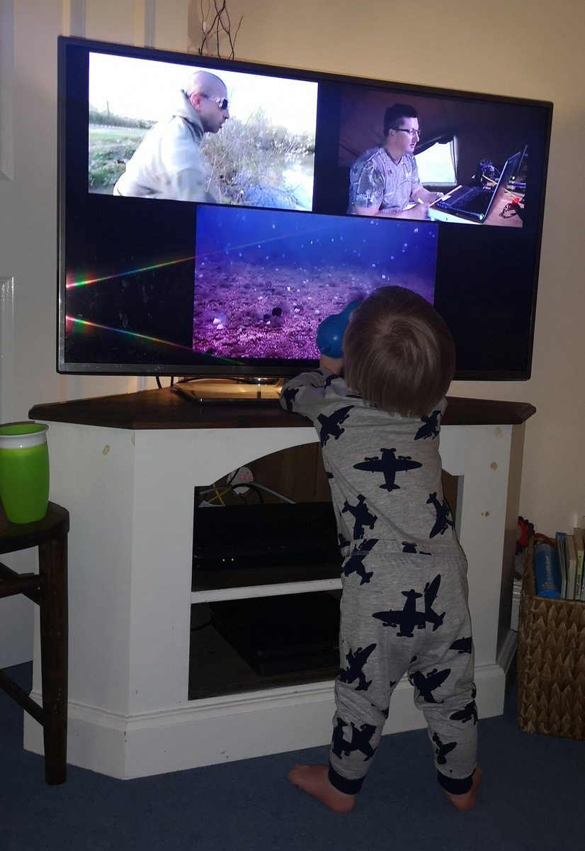 17 months old and al<b>Ready</b> a fan! #underwater7 @KordaOfficial @AliHamidi #carpfishing https://
