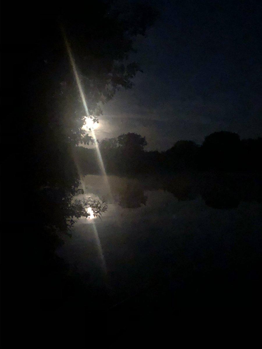 Full Moon in a couple of nights   #carpfishing https://t.co/J9mvnrXTv7