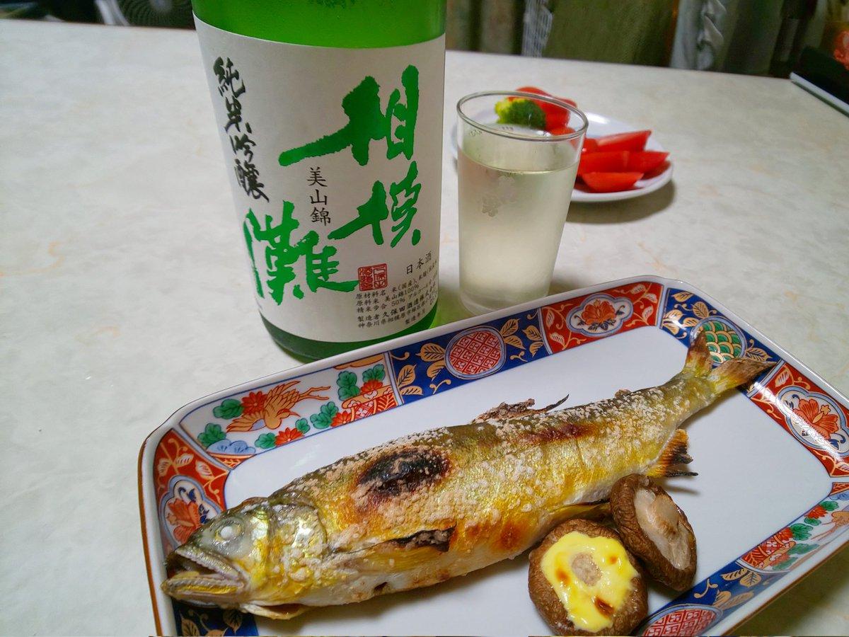 test ツイッターメディア - 神奈川酒蔵巡り。  相模灘の久保田酒造さんは津久井の自然に溶け込む風情溢れる酒蔵です。 純米吟醸美山錦。キリッとしつつも柔らかく、力強いふくらみを楽しめる酒です。鮎の塩焼きをアテに今宵も悦びをありがとう。 https://t.co/yDFKW78XbN