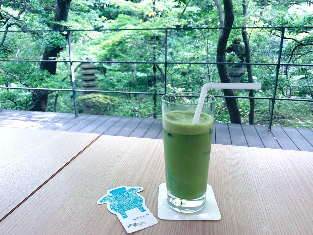 test ツイッターメディア - ここは一体、どこの避暑地…?という、美しき緑ですが、港区は南青山にある根津美術館の一角です。お庭にあるカフェはガラス張りで、蝉時雨とピアノの音色を聞きながら、ゆったりと過ごせます。今年の夏は何処にも行かないけれど、束の間の癒しの時間🎐#bura_bi_now https://t.co/Pq2PGZcs9M