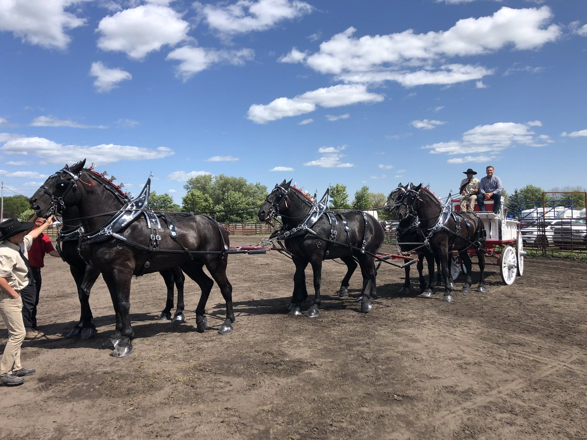 test Twitter Media - Congratulations to Kent, Marnie Anderson & Family from Pilot Mount on winning the six horse hitch heavy draft category at the Virden Draft Horse Show this weekend. https://t.co/2MS01iCciy