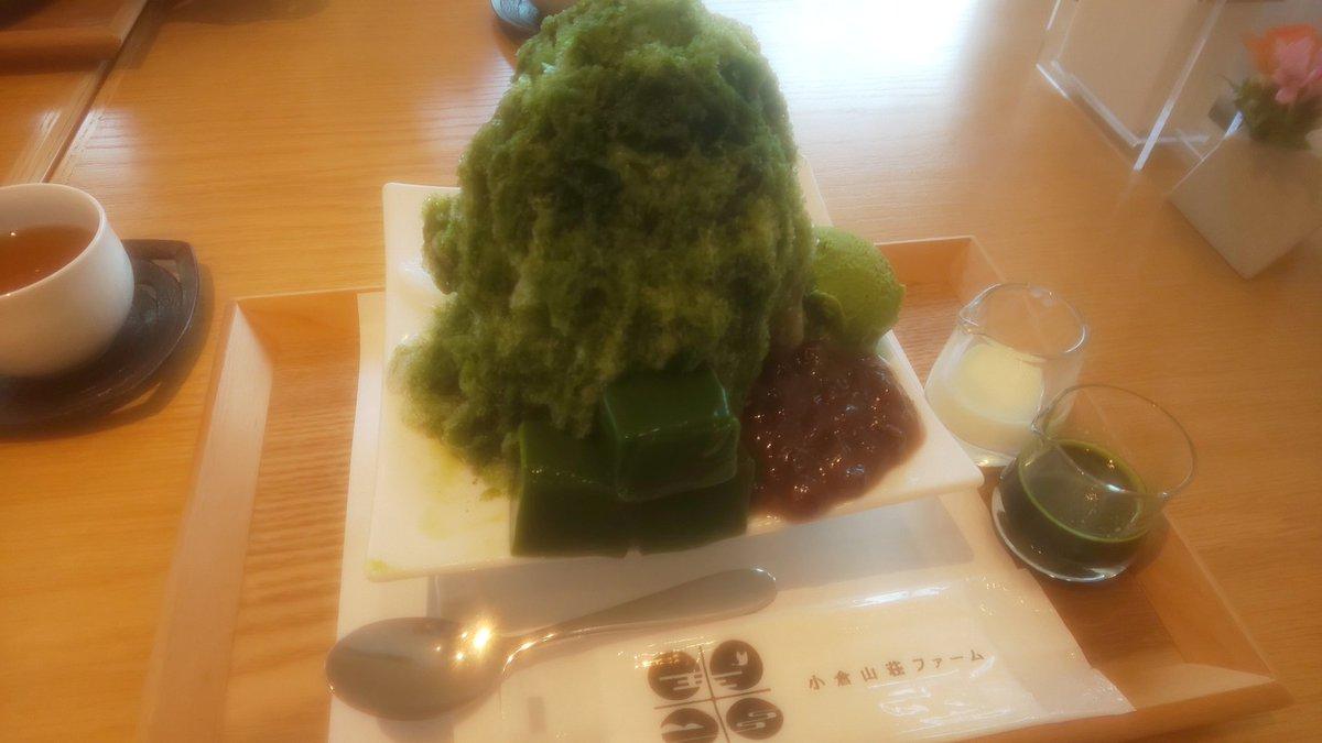 test ツイッターメディア - 中村軒断念したので、 小倉山荘に行って来ました。 抹茶かき氷、美味しかったっ。 https://t.co/8X7wMR1kga