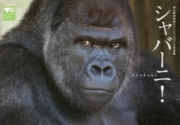 test ツイッターメディア - 【愛知・名古屋本】『シャバーニ! 東山動植物園オフィシャルゴリラ写真集』(扶桑社)世界中から熱い視線を集める名古屋・東山動植物園の「イケメンゴリラ」、シャバーニの1st写真集。ゴリラ・チンパンジー舎は昨年の秋にリニューアルをし、野生の環境により近付けた造りになりました。 https://t.co/ZQpl9buQkn